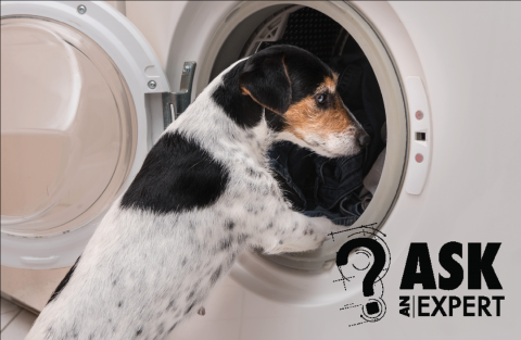 Ask an Expert: Energy-Efficient Clothes Washers